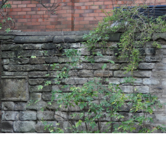 Section of churchyard wall to NE of Church